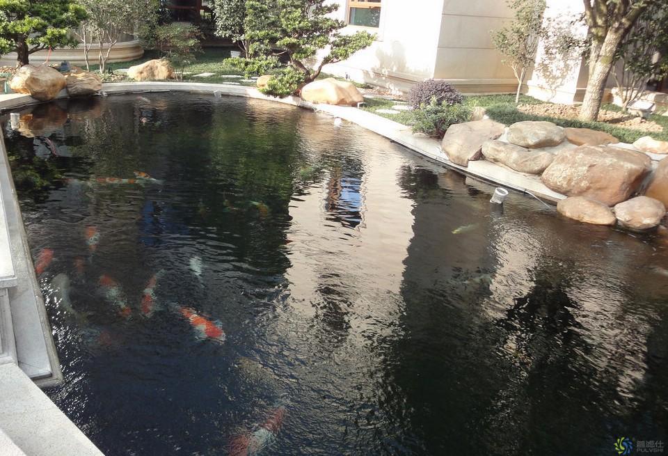 大钟电器_鱼池景观水处理真正实现365天不换水,一样清澈透底