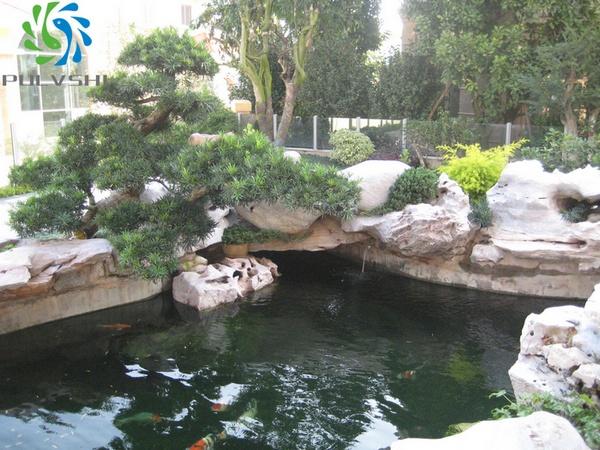 广东南海孙总别墅鱼池景观水处理后大量节约水源