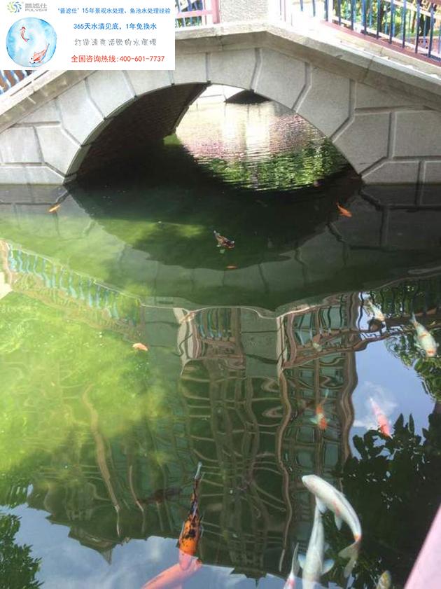 小区景观水处理
