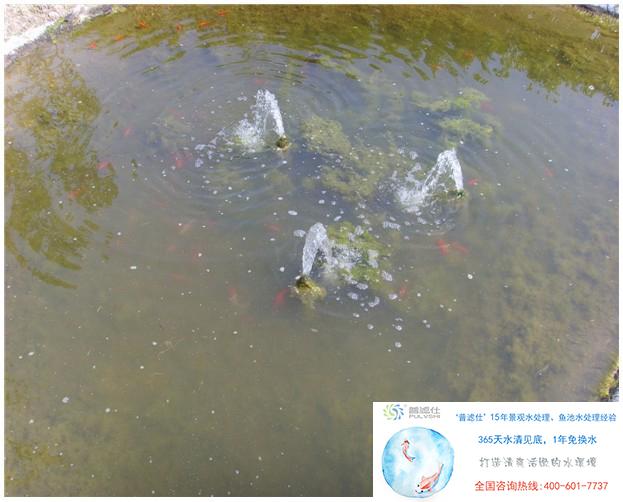 鱼池过滤系统