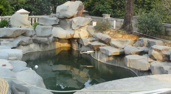 增城黄总别墅鱼池景观水处理