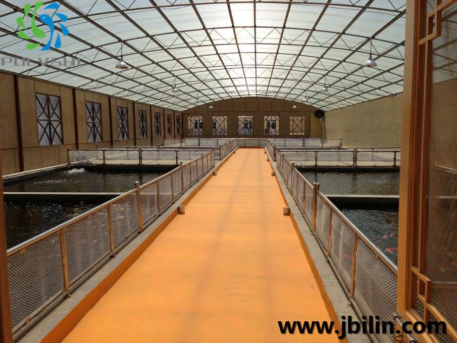 山东淄博某锦鲤渔场——景观水处理工程设计方案