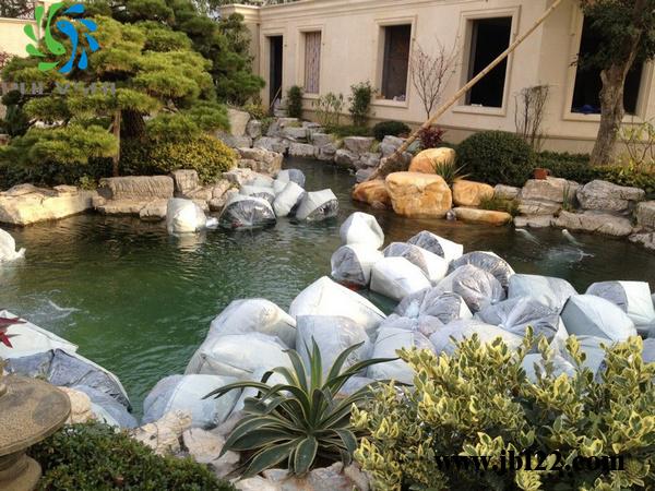 浙江上市公司鱼池水处理方案