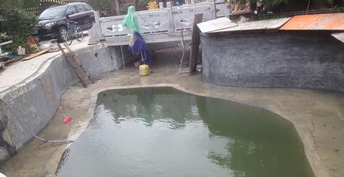 广州黄总需景观水处理解决方案解决鱼池问题