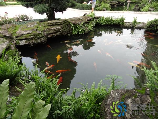 做了景观水处理的水质对比