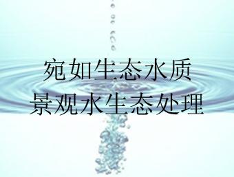 宛如自然生态水质·金碧林景观水生态处理