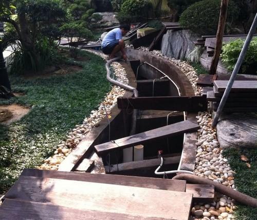 锦鲤鱼池景观水处理系统的重要性
