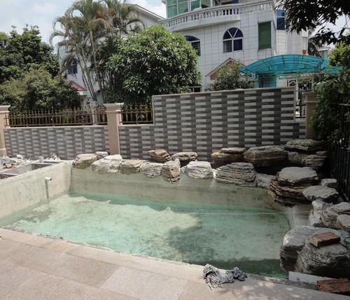新鱼池要怎么样水处理?