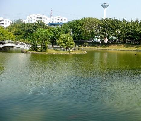 人工湖景观水处理