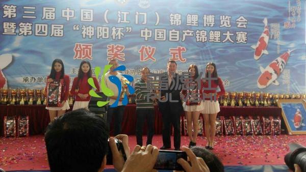 2014年中国(江门)锦鲤博览会,金碧林景观水处理荣耀而归