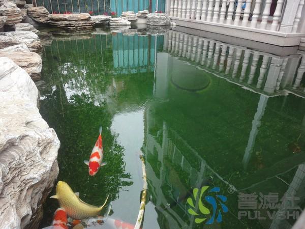 美好的生活·金碧林的景观水处理处处体现