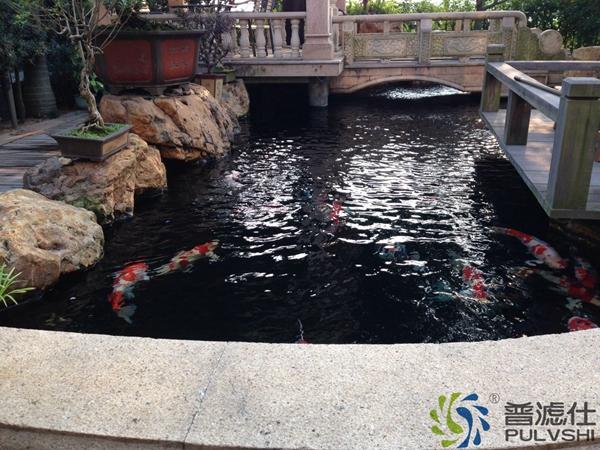景观水处理一定要专业吗