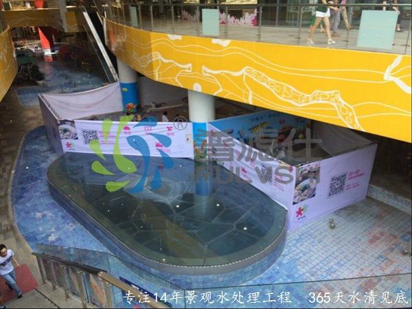 """""""普滤仕""""精彩为您呈现——湖北宜昌水悦城鱼池景观水处理案例"""