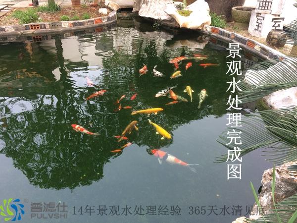 祝贺'普滤仕'杭州分公司完成东昱画室景观水处理案例