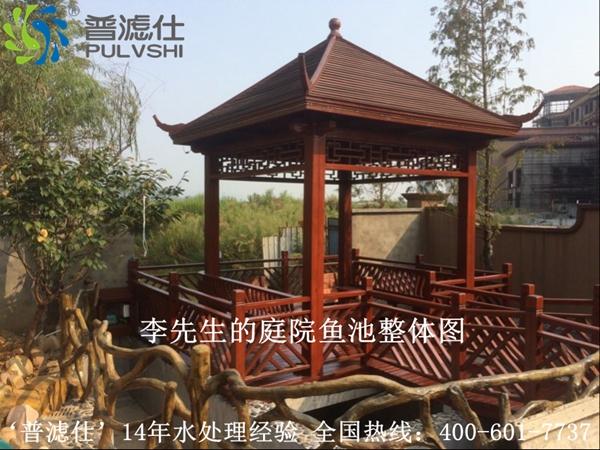 湖南岳阳李先生别墅景观水处理案例