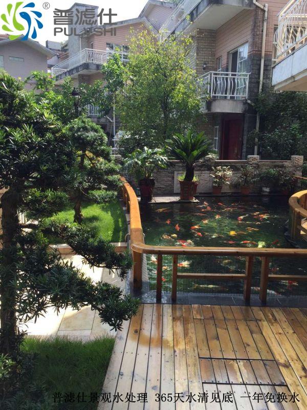 江西邓总别墅景观水处理工程一年后,水质依旧清晰见底