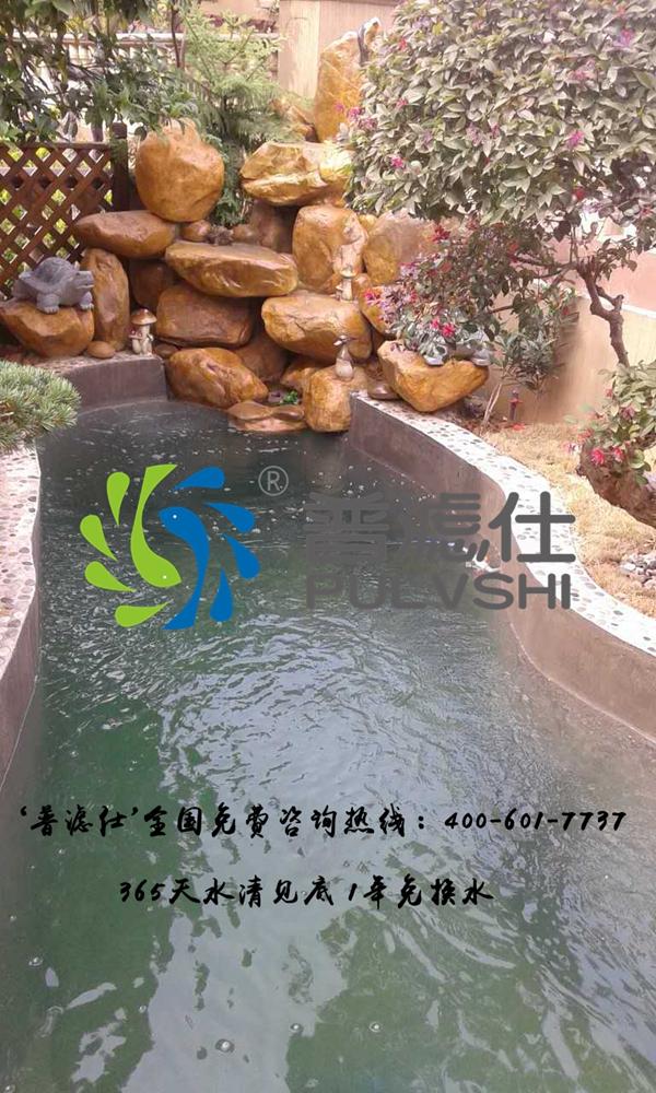 岳阳周先生鱼池景观水处理案例
