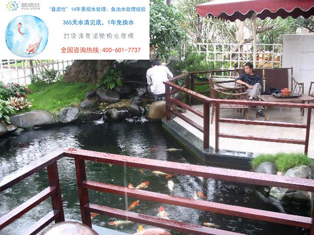 景观水处理让生态鱼池保持清澈,达到常年不换水的效果