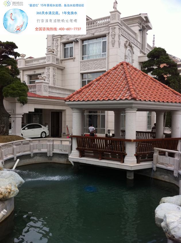 广州孙先生的别墅景观水处理后的水质清澈见底