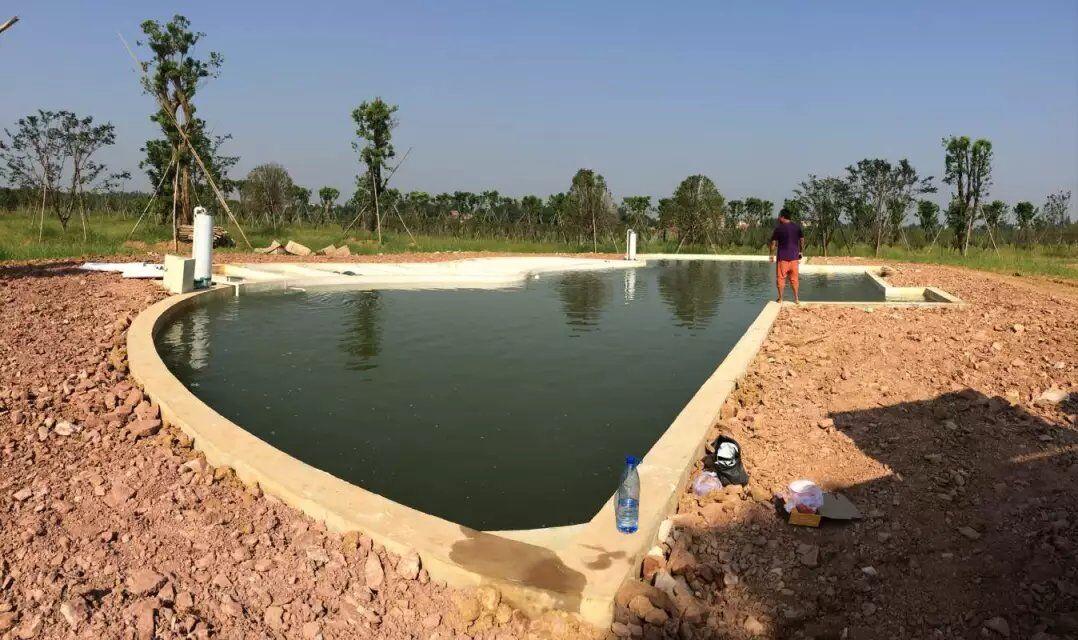 金碧林公司给湖北汉川做的生态景观水处理的工程已经完工