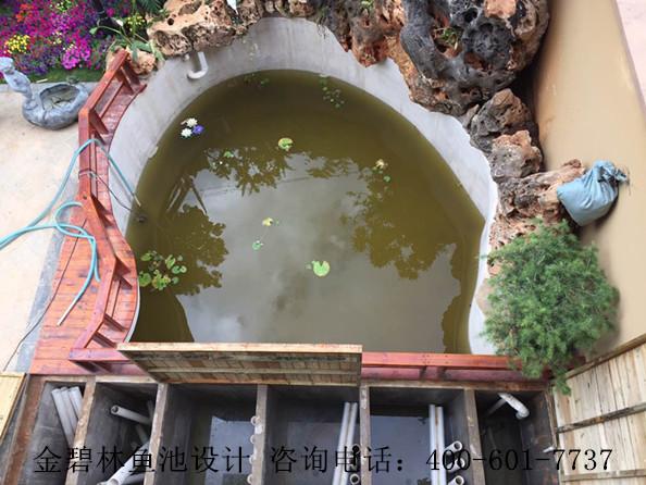 云南庭院鱼池景观水处理案例