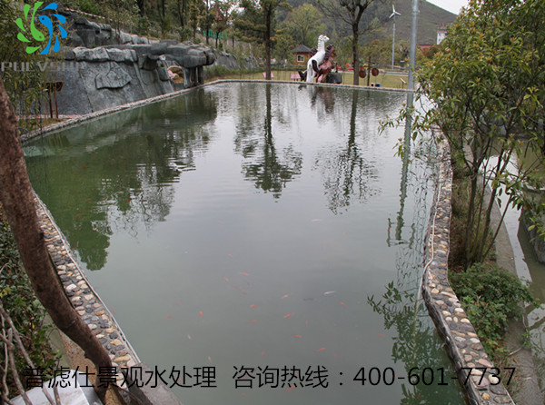 湖南旅游景区生态鱼池景观水处理