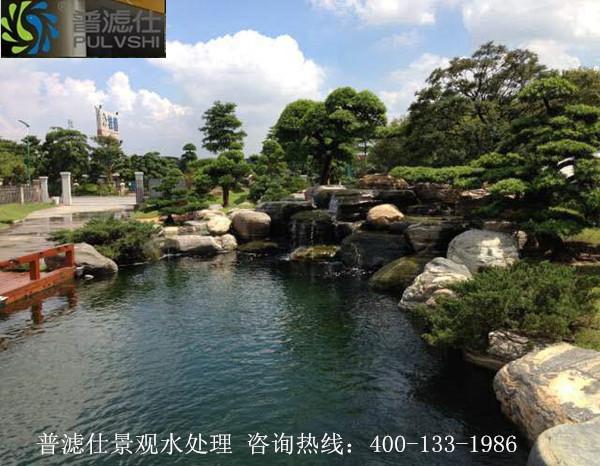 别墅景观鱼池水处理--走访案例分享