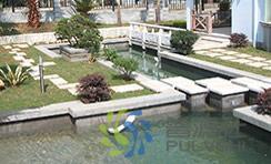 60吨景观水处理过滤方案