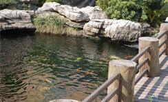 寺庙景观水处理解决方案