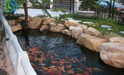 公园景观水处理解决方案