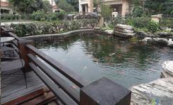 地产小区景观水处理解决方案